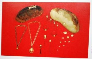 Varde-perler Flodperlemusling. komprimeret